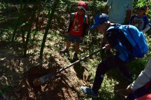 高雄小學在口埤挖竹筍初體驗