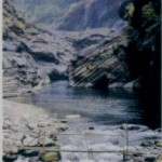ViewImage (13)